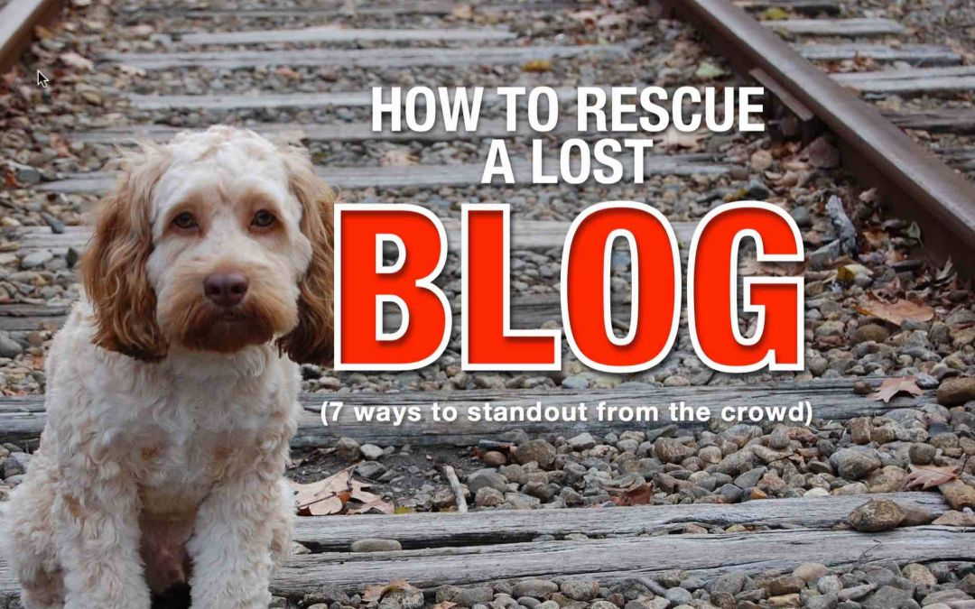 Make your blog stand out from the crowd